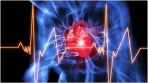 Charité–Forscher können das Risiko für lebensbedrohliche Herzrhythmusstörungen voraussagen