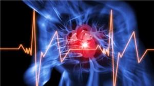 Herz-Kreislauferkrankungen verursachen rund 41 Prozent aller Todesfälle