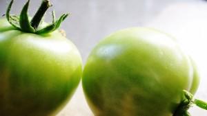 Warum unreife Tomaten giftig sind