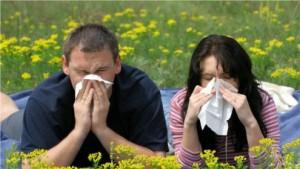Jeder Dritte Deutsche ist Allergiker
