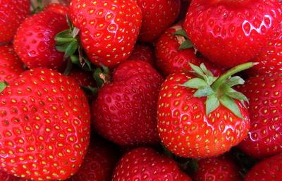Schimmelnde Erdbeeren besser schnell entsorgen.