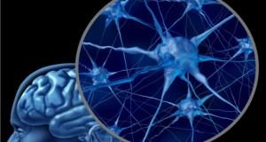 Zusammenhang zwischen Schlafstörungen und Alzheimer entdeckt